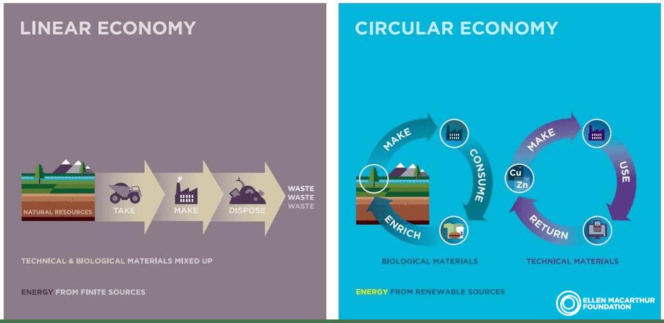 Circular economy vs linear economy graph