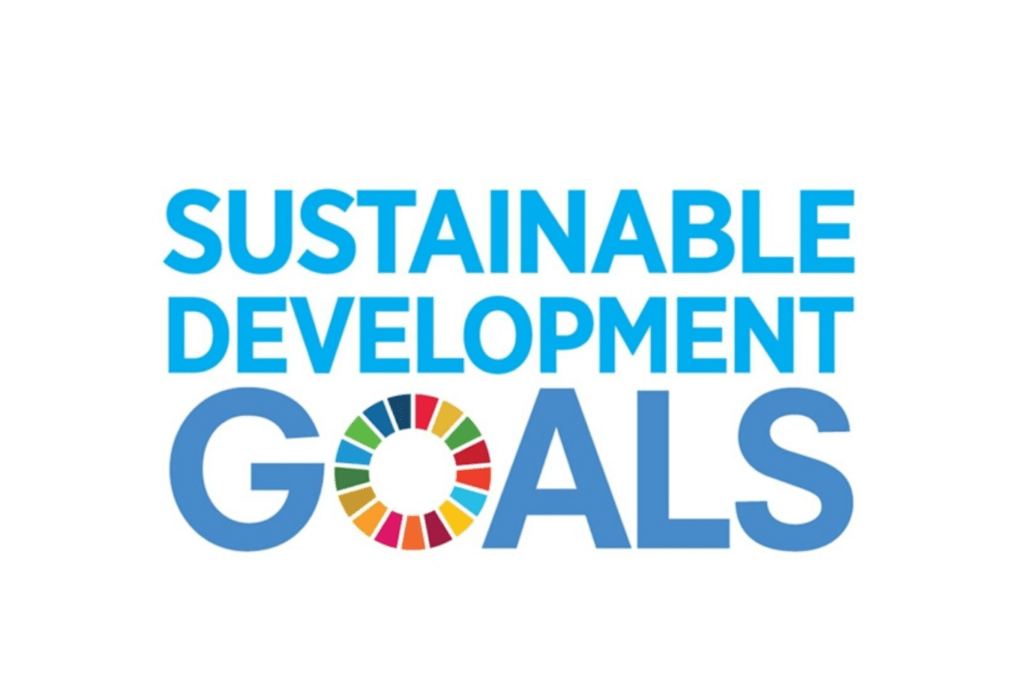 Sustanaible Development Goals (SDG)