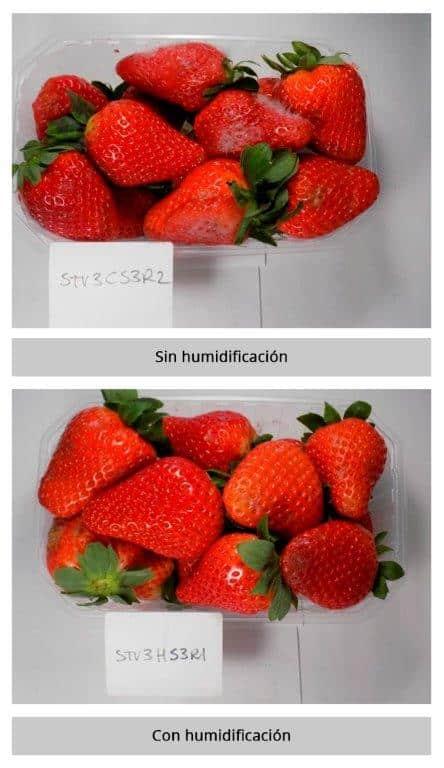 Comparación efectos con y sin humidificación ultrasónica